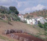 Albuñol 050 CORTIJO LOS AMATES