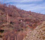 Alpujarra de la Sierra 009 MOLINO DE VARGAS