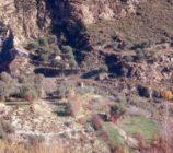 Alpujarra de la Sierra 012 MOLINO DEL CUBO