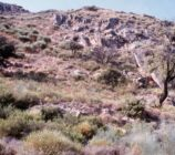 Alpujarra de la Sierra 054 CORTIJO DE LOS BARTOLOS